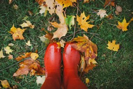 fall_feat