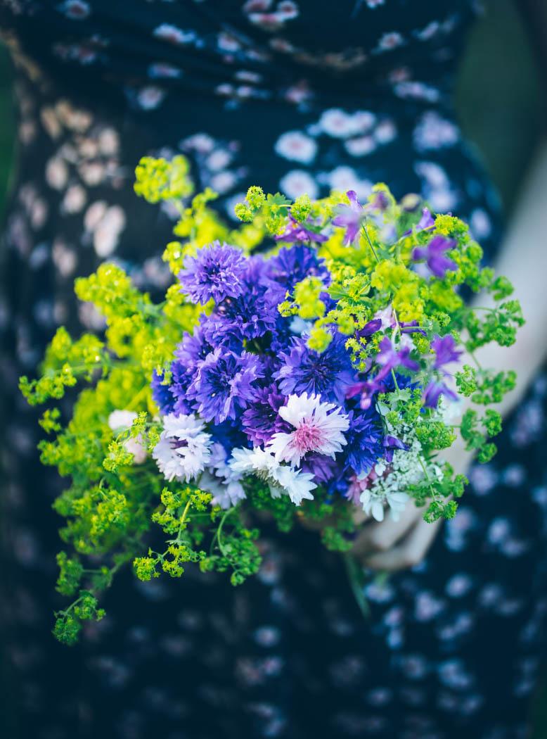 kwiaty jednoroczne-17