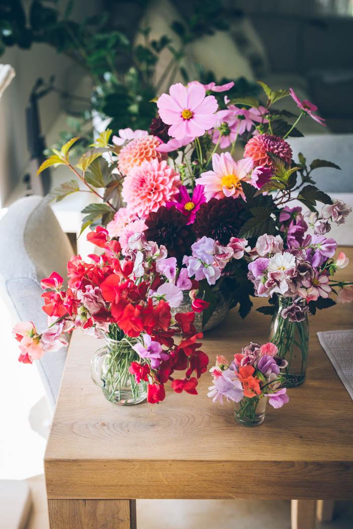kwiaty jednoroczne-2