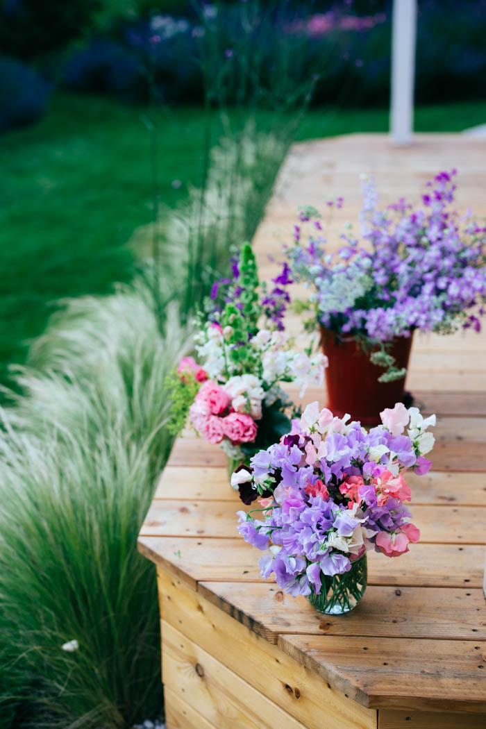 kwiaty jednoroczne-23