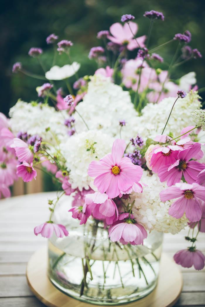 kwiaty jednoroczne-9
