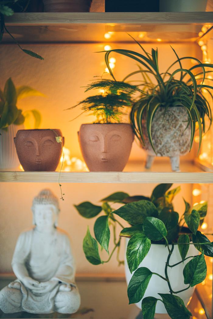 taras tarasy dekoracje tarasu-1